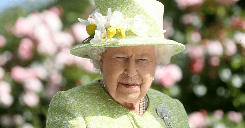Queen horrified after spotting rats running through Palace kitchens, pest control called in to tackle menace