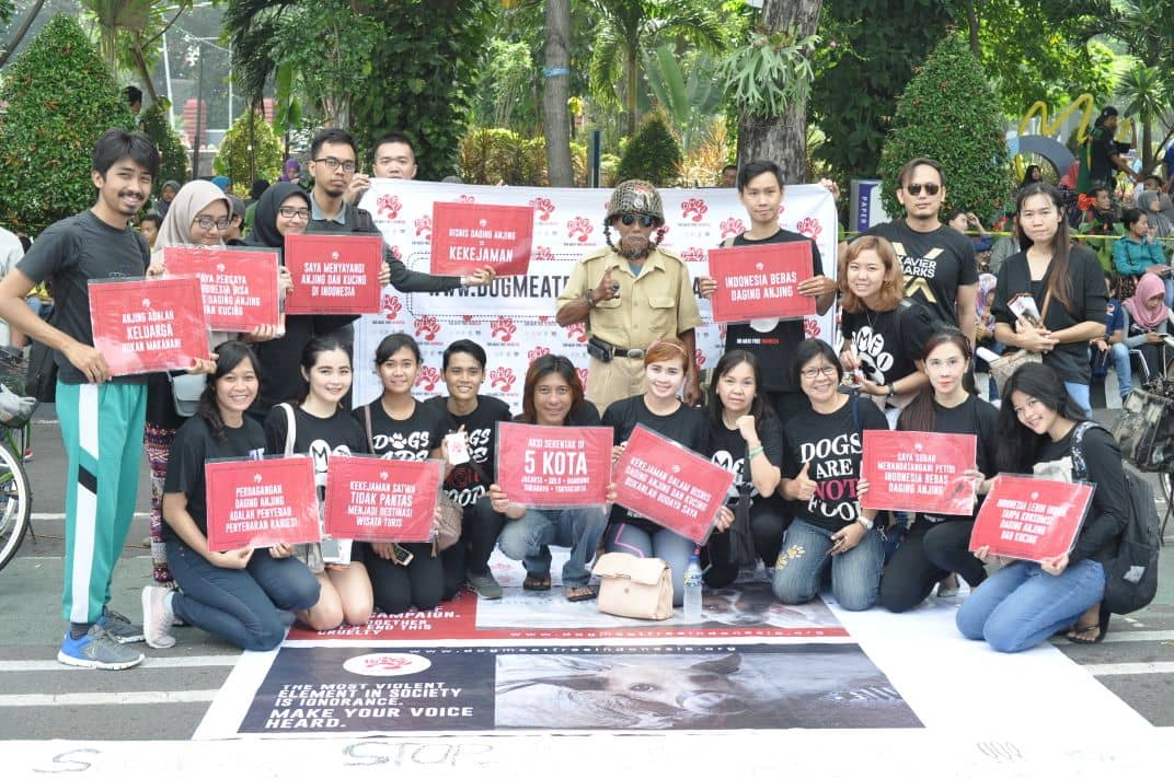 The campaign, called Dog Meat Free Indonesia (DMFI) coalition comprises of an Indonesian non-profit called Animal Friends Jogja, Change for Animals Foundation, Humane Society International, Jakarta Animal Aid Network and FOUR PAWS, an international animal charity.(DMFI)