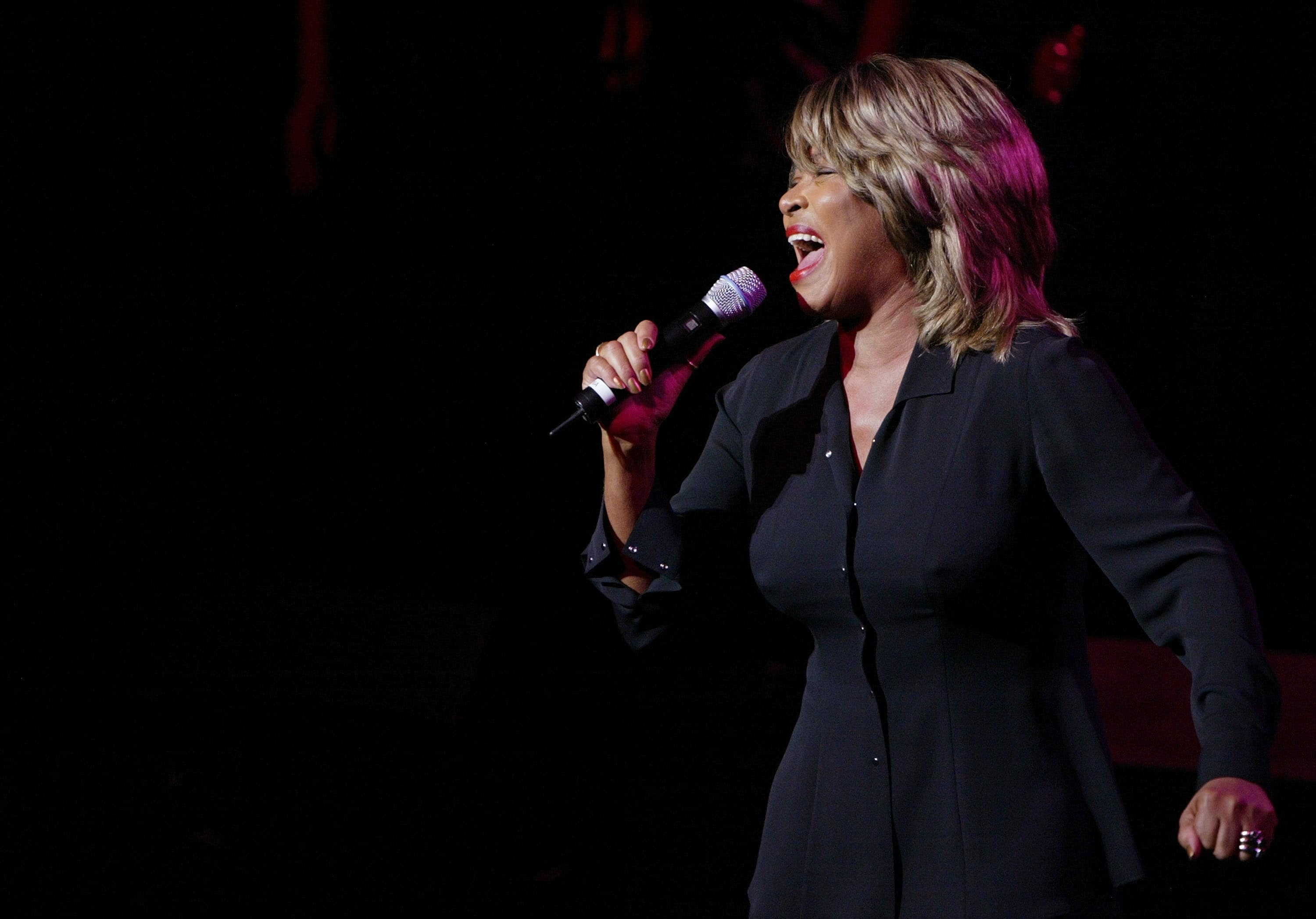 Tina Turner admitted that Craig was deeply affected by Ike's abuse (Getty Images)
