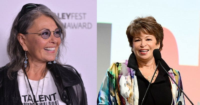 Roseanne Barr Wants To Do A Nude Interview With Valerie Jarrett On Her New Show