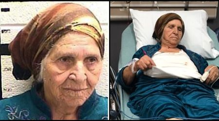 Police chief justifies tasing 87-year-old Syrian woman, who was holding a kitchen knife to cut dandelions