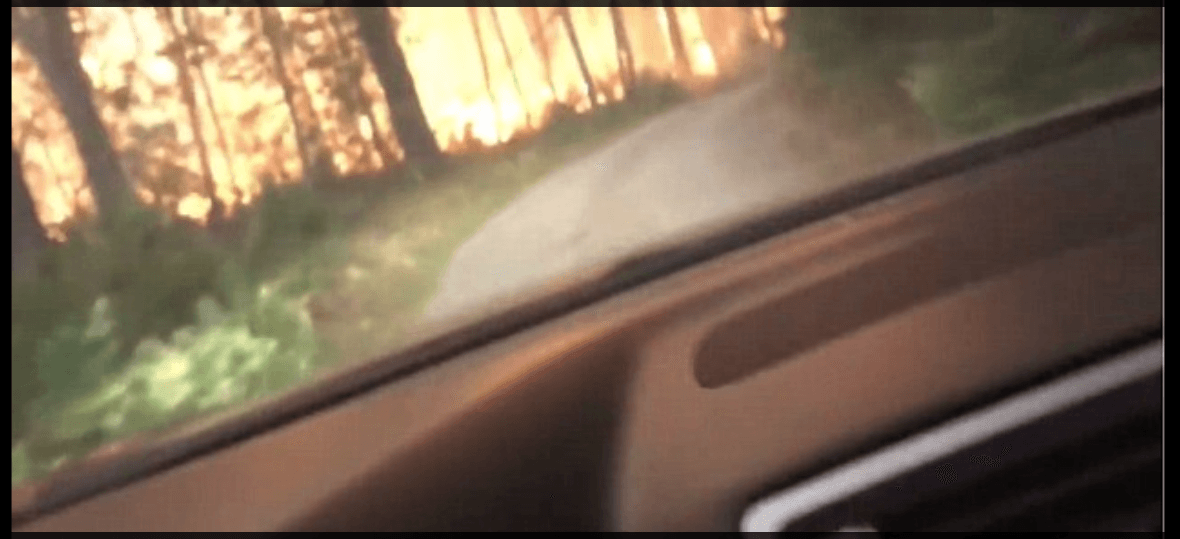 Screengrab of the video shows the woods on fire as the pair try to escape the blaze. (Twitter)