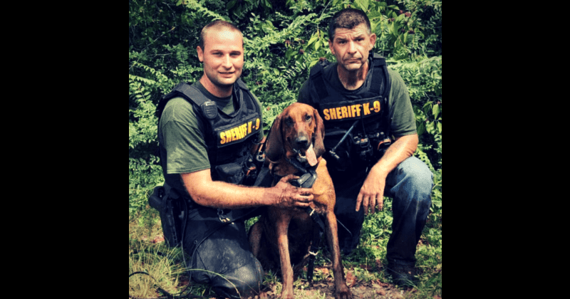 Missing three-year-old found by K-9 bloodhounds within half an hour after search crews spent hours trying to locate him