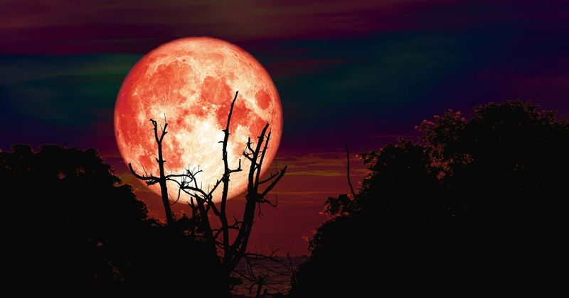 1. The Hunter's Moon Is the Traditional Name for the October Full Moon