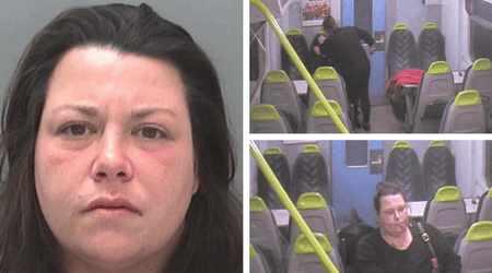 Woman repeatedly stabs friend in a train for four minutes leaving the victim crawling through the carriage