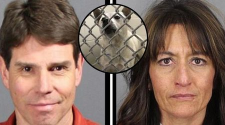 Dog sexually abused by Colorado owners euthanized after traumatic experience left him too aggressive to be adopted