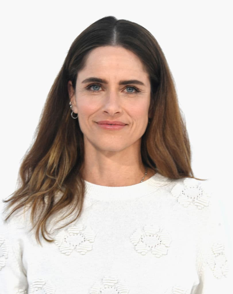 Amanda Peet (Source: Getty Images)