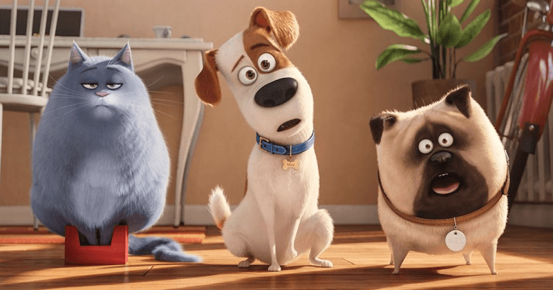 'The Secret Life of Pets 2': Trailer for 2019 movie offers first glimpse of Patton Oswalt voicing protagonist Max