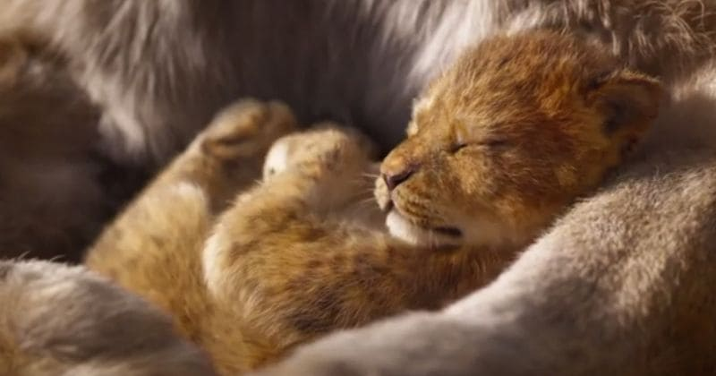 'The Lion King' teaser trailer evokes nostalgia for the magic of Disney's 1994 classic