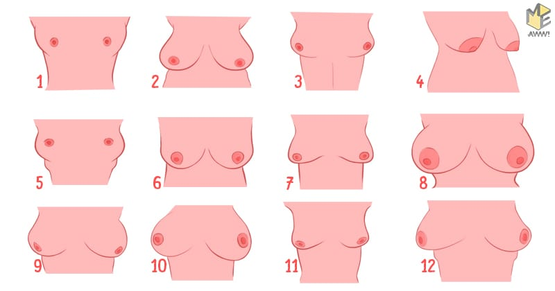 Shape of your breasts can determine your personality