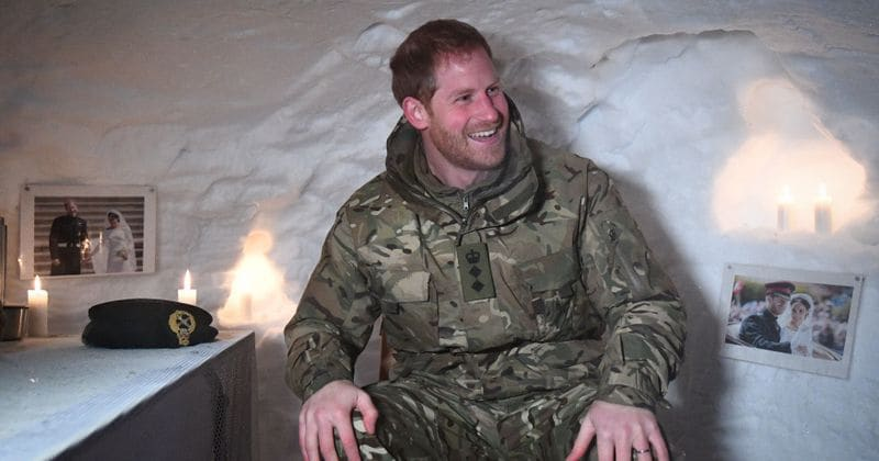 Prince Harry Racked Up A $38,000 Bill During Strip Poker