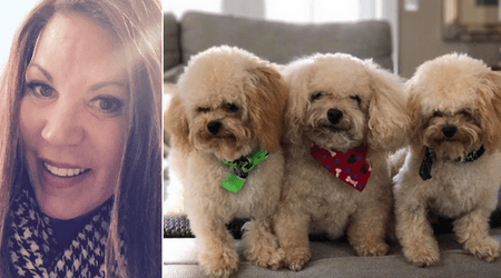 Mother Of Four Spends 50k To Clone Beloved Toy Poodle