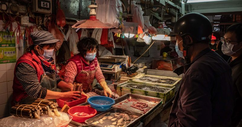 Chinese wet markets come back to life, sell bats and other animals as world continues to fight coronavirus