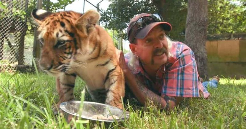 USDA was aware of Joe Exotic's animal cruelty complaints for decades but kept renewing his license, says PETA