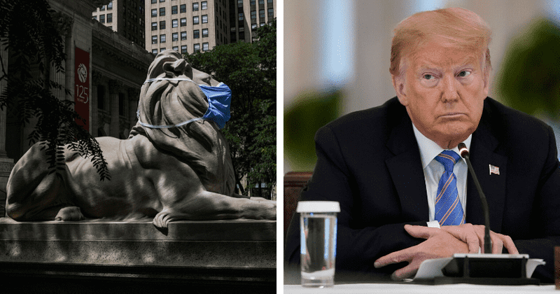 Iconic New York Public Library lions mask up to set an example even as Trump stubbornly refuses to wear one