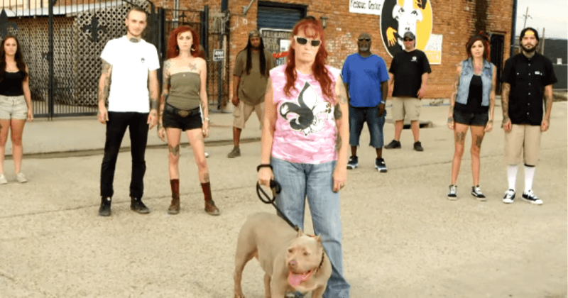 Pit Bulls Parolees Season 16 Release Date Plot Cast Trailer And All You Need To Know About The Animal Planet Series Meaww