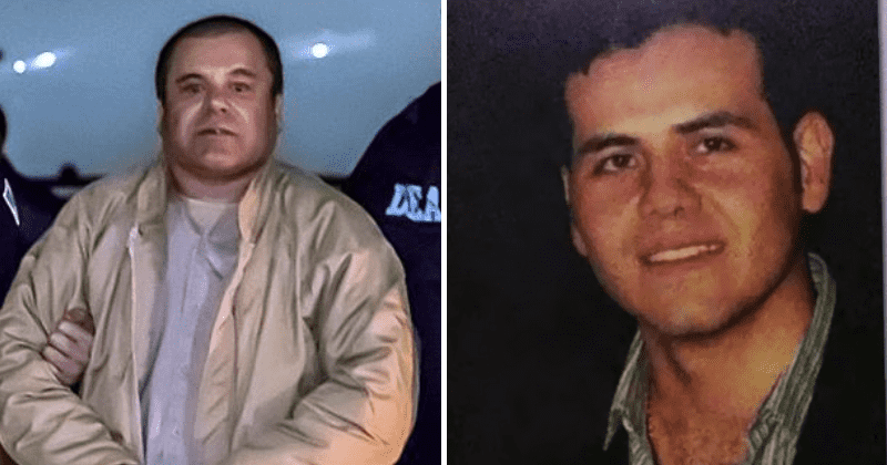 'World's Most Wanted': El Chapo was arrested after his successor's son betrayed him and became a witness