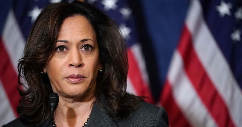 Kamala Harris Wikipedia Page Redirects To C Tala Harris Minutes After She S Named Biden S Running Mate Meaww