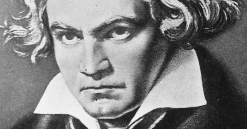 Beethoven's Fifth Symphony canceled? Classical piece labeled 'symbol of elitism', fans say cancel 'WAP' too