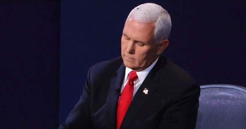 Vp Debate 2020 Fly On Pence S Head Gets Over 100 Twitter Accounts Internet Says Covid Test For The Fly Please Meaww