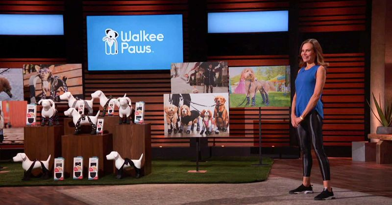 'Shark Tank': Walker Paws goes without a deal, here's why fans feel Sharks missed out on a golden opportunity