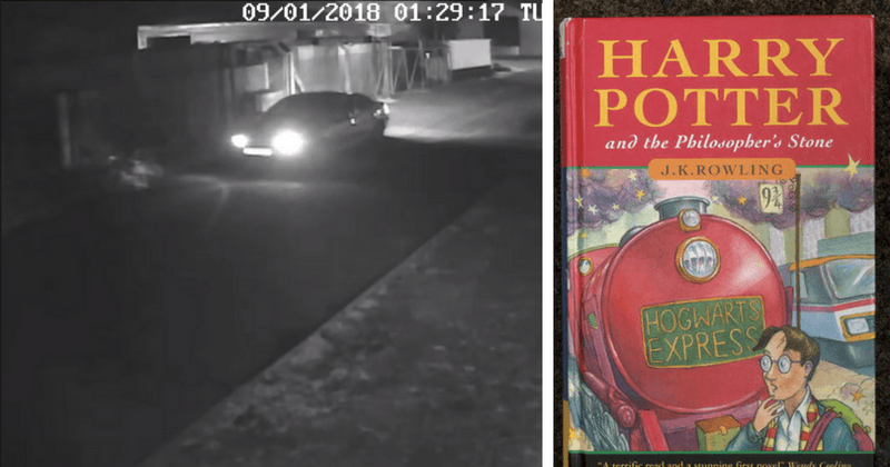 Mischief Managed: Thieves in Norfolk steal £40,000 1st edition of Harry Potter among 13 other rare books