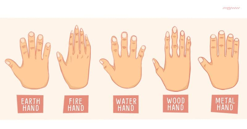 What do the shape of your hands reveal about your personality?